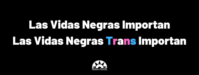 Black Lives Matter Black Trans Lives Matter (5)